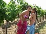 Lesbian sex in the orchard
