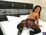 Ebony tranny Cintia Matarazzo strokes her big dick in bed