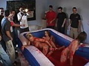 Ultimate Jello Wrestling
