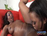 Ebony Bi Babe Worships A Pussy