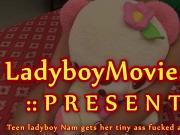Teen Ladyboy Nam Fucked Bareback