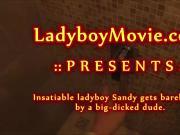 Ladyboy Sandy Fucked Bareback