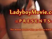 Ladyboy Pornstar Many Fucked Bareback