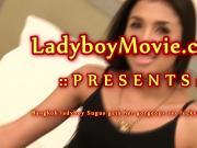 Ladyboy Sugus Gets Fucked Bareback