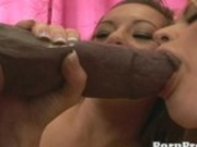 Blonde hottie Sindee Jennings fills her warm mouth wiith a monster boner