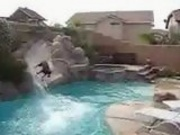 Dogs Gone Wild on the Swimming Pool Slide