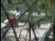 Caught sucking cock in a park