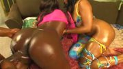 Sick Asses Pounded Hard