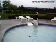 Saving Baby Ducks Stuck In Pool