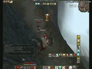 Good Times With A Horse In Age Of Conan MMORPG