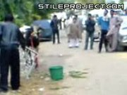 Cow Drop Kicks Man In Pakistan