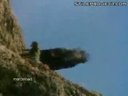 Amazing bird throws goat off cliff