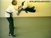 Karate Chimp Does Spinning Kicks & Breaks Wood