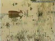 Deer Flip Kill By Deer Hunter