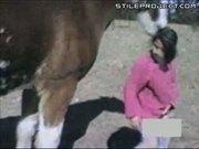 Horse's vengeance