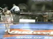 Boxer Knocked Out While Jumping On Ropes