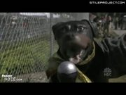 Triumph the Insult Dog: MJ Trail