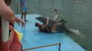 Guy Is Humped By A Dolphin