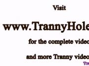 Busty tranny shemale jumps on dick