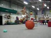 Exercise Ball Champion