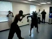 Dorm Boxing Knock Out