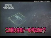 Megalodon Caught On Deep Sea Camera