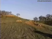 Epic Fail ATV 4-Wheeler Jump Wipeout