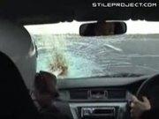 Bird Flies Straight Into Race Car Windshield & Goes Splat
