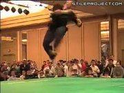 Martial Arts Trickz