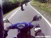 motorcycle vs dog