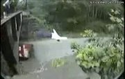 throwing a dummy off a bridge into oncoming traffic