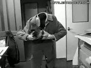 Asian guy loses his head