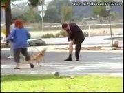 THE DOG, HE BITE MY VAGINA!