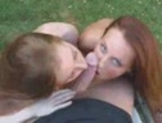 Two Red Heads Blow In The Woods