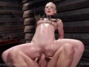 Collared Blonde Pussy Pounding