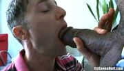 Boy taking a black dick 2