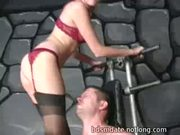 Slave Kicked In The Balls - Free Sex Video