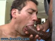 Gay big cocks in tight underwear porn Big beef whistle