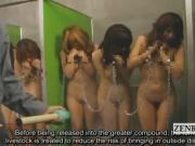 Subtitled ENF CMNF Japanese weird livestock inspection