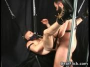 Homosexual teddy intercourse slinged up and hammered st