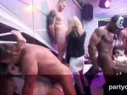Frisky kittens get totally insane and naked at hardcore party