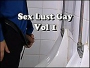 Dvd sex lust gay vol 1 s1