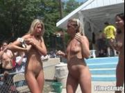 Wild chicks having fun like sluts