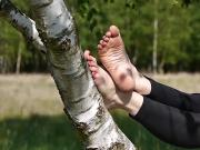 Bare feet on birch tree