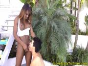 Black shemale toyed and getting bj outdoors