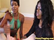 Glam tugging babes team up on a white cock